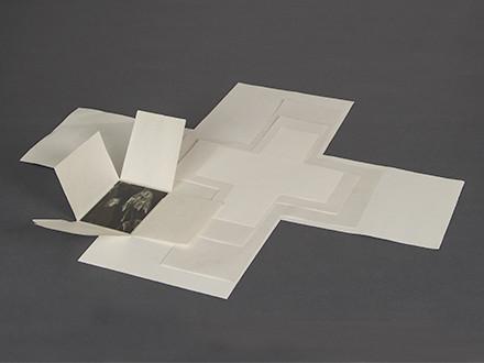 4-flap enclosure (reg)