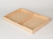 Divided Specimen Trays