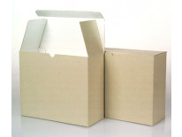 Corrugated Document Cases