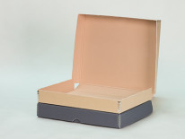 Flat Document Cases