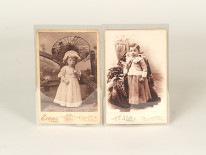 polyester cabinet card sleeves