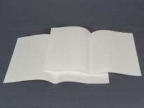 Species Folders